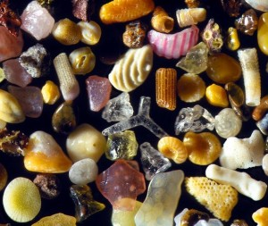 sand-grains-under-microscope-by-gary-greenberg-1-600x506[1]