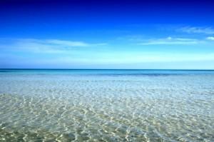 Blue-Horizon-485x728