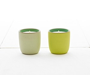 s15-06-heath-seasonal-seasonal-scented-candle-pair-731by607_2